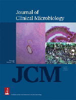 Cover image from the Journal of Clinical Microbiology