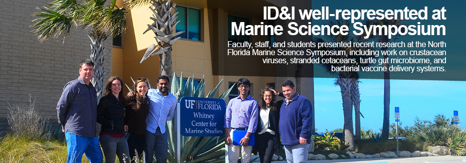 Text reads: ID&I well-represented at Marine Science Symposium. Faculty, staff and students presented recent research at the North Florida Marine Science Symposium, including work on stranded cetaceans, crustacean viruses, turtle gut microbiome, and bacterial vaccine delivery systems. Image: a group poses in front of the Whitney Laboratory for Marine Bioscience