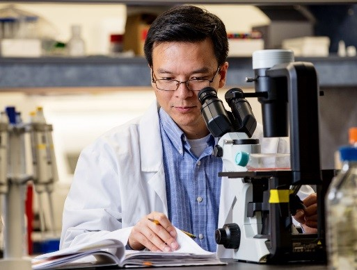 Dr. Zhou turning a page, sitting in front of a microscope