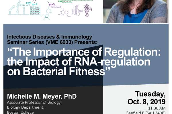 "Text reads: Infectious Diseases & Immunology Seminar Series (VME 6933) Presents: ""The Importance of Regulation: the Impact of RNA-regulation on Bacterial Fitness,"" Michelle M. Meyer, PhD; Associate Professor of Biology; Biology Department; Boston College. Tuesday, Oct. 8, 2019; 11:30 AM; Banfield B (SAH 340B); Small Animal Hospital; Host: Dr. Mansour; Mohamadzadeh. Image 1: TIGR4_RNAs_genes_colored_structures. Image 2: Portrait of Dr. Meyer"